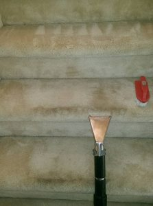 carpeted_steps_cleaning